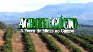 VÍDEO: Segunda matéria da série sobre agronegócio discute tecnologia na produção de café