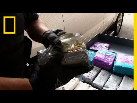 Cash Smuggling | National Geographic