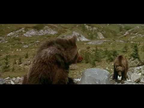 有媽的孩子像個寶:小熊與獅子!