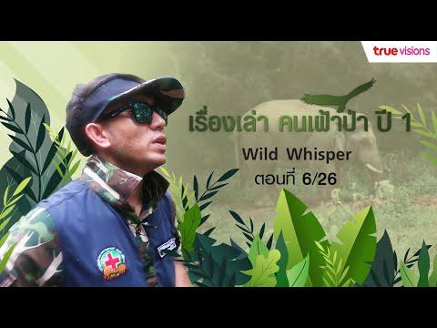 Wild Whisper Season 1 ภารกิจช่วยเหลือสัตว์ป่าในพื้นที่กับเหล่าทีมนักอนุรักษ์ | EP.6
