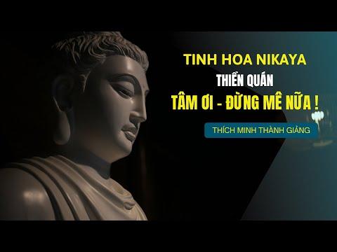 Tinh Hoa NIKAYA -Thiền Quán Tâm Ơi -  Đừng Mê Nữa !