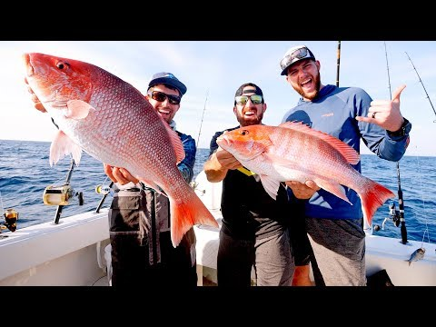 Fishing for GIANT Snapper and Amberjacks with Dude Perfect - Thời lượng: 12 phút.