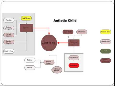 Medical Treatment of Autism Myth or Reality