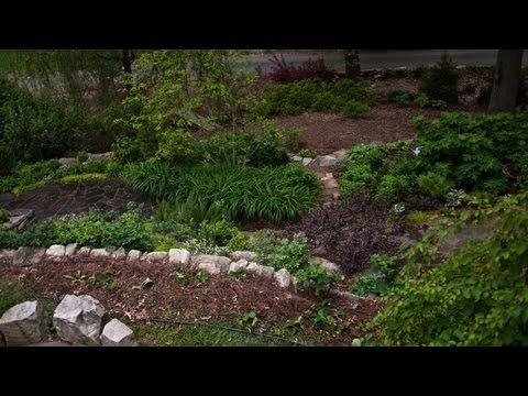 Appetite Grows for Edible Gardens