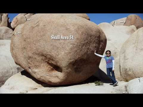 Proof of Aliens on Earth? Part 1: Joshua Tree National Park, California