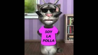 VIDEO WASAP (53) Chiste...no Se Mandan Saludos