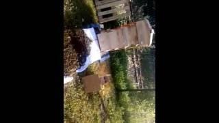 Bienenvolk zieht in Warré-Beute