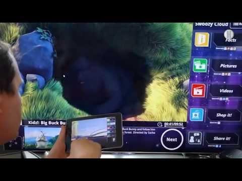 Der TV-Monitor als Fenster zum Netz