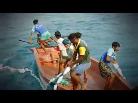 Индийские рыбаки зацепили сеть за судно
