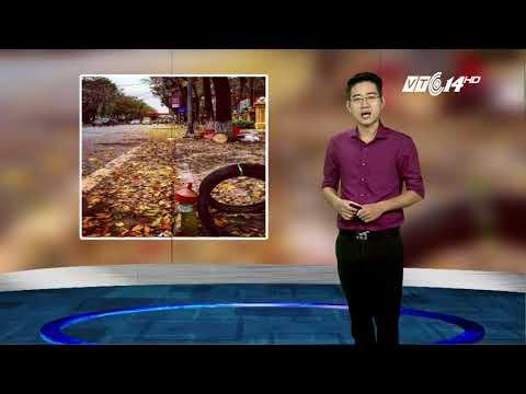 VTC14 |Thời tiết Hà Nội ngày 16/08/2017| Dự báo thời tiết hôm nay