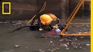 Video Sewer Diving | National Geographic MP3, 3GP, MP4, WEBM, AVI, FLV Februari 2019
