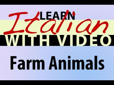 Tiere auf dem Bauernhof - Italienische Vokabeln