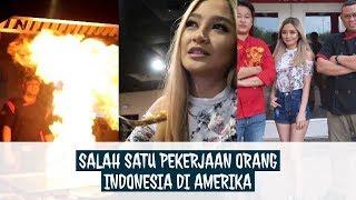 Video CUMA DI AMERIKA!! MASAK NASI GORENG, GAJI LEBIH DARI 50JUTA/BULAN MP3, 3GP, MP4, WEBM, AVI, FLV Juni 2019