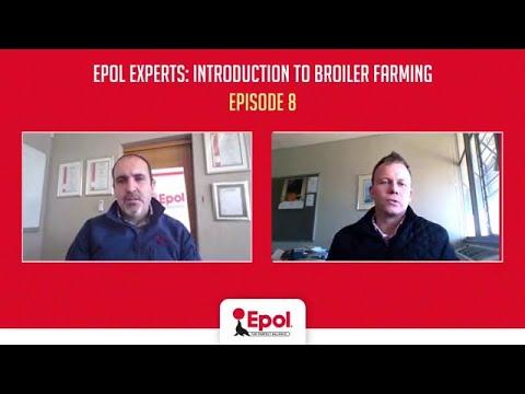 Epol Experts: Episode 8