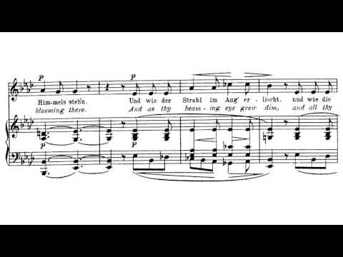 Robert Franz - Ich hab' in deinem Auge, op. 5, Nr. 6 (Rückert)
