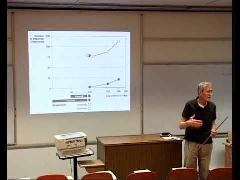 Professor Haim Cedar. Eine persönliche Geschichte der Epigenetik - Lecture 4: Stem Cells and Cancer