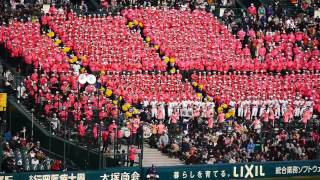 2014 センバツ高校野球 佐野日大 マグナ