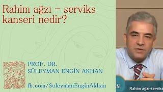 Rahim ağzı - serviks kanseri nedir? - Prof. Dr. Süleyman Engin Akhan