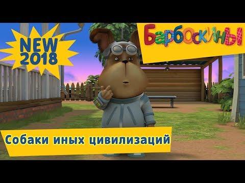 Собаки иных цивилизаций 👽 Новая 189 серия 👻 Барбоскины (видео)