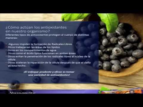 Video super saxi de youngevity un poderoso antioxidante download in MP3, 3GP, MP4, WEBM, AVI, FLV January 2017