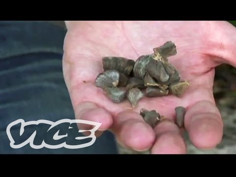 exclusive - For more VICE News videos, click here: http://bit.ly/PILfBe VICE's Ryan Duffy went to Colombia to check out a strange and powerful drug called Scopolamine, a...
