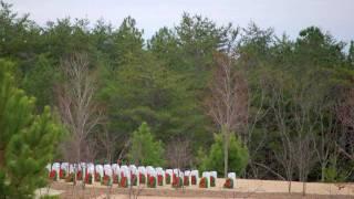 Canton (GA) United States  city photos : Wreaths Across America 2009 - Canton, GA
