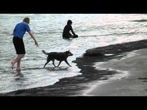 FujiFilm Finepix S2980: Test Video 1