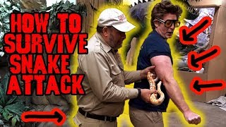 How to Survive a Snake Attack *DON'T TRY THIS AT HOME* by Prehistoric Pets TV