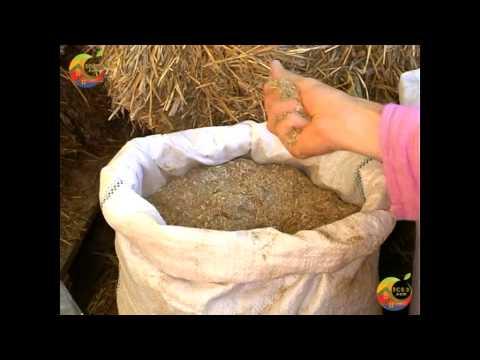 Экологическое строительство - натуральные материалы