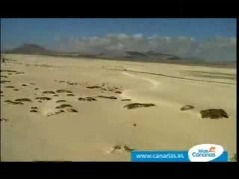 0 Turismo Islas Canarias, promoción turística – video Youtube