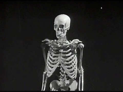 House on Haunted Hill (1959) REVIEW