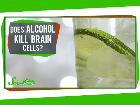 Does Alcohol Kill Brain Cells