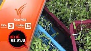 สถานีประชาชน - เกษตรกรปลูกผักอินทรีย์ ทั่วประเทศ ร้องถูกโกงค่าขายผัก