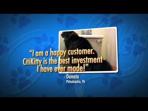 Cat Toilet Training Kit from CitiKitty – Amazing!!