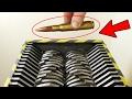 SHREDDING BULLETS - EXPERIMENT