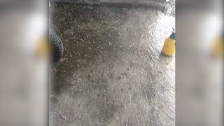 Video Hujan Es Landa Aceh Tengah
