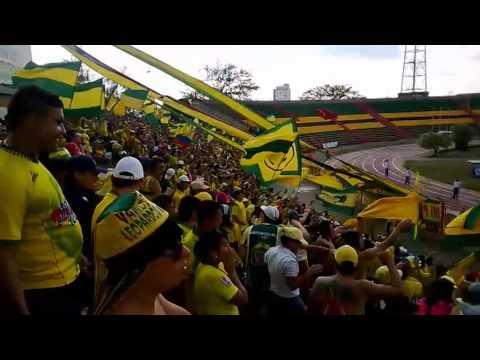 El karnaval en las graderias, FORTALEZA LEOPARDA SUR 2014 - Fortaleza Leoparda Sur - Atlético Bucaramanga