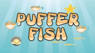 Puffer Fish YouTube video