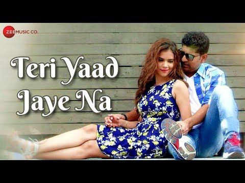 Teri Yaad Jaye Na -  Music Video | Tushar Gaikwad