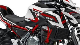 9. New 2019 Kawasaki Z650 ABS - naked bike 650cc 4-cylinder   KAWAZAKI Z650 DESIGN CONCEPT 2019