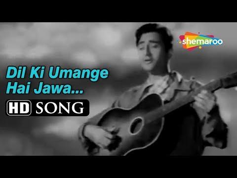 Video Dil Ki Umange Hai Jawaan | Munimji (1955) Dev Anand | Nalini Jaywant | Bollywood Classic Songs download in MP3, 3GP, MP4, WEBM, AVI, FLV January 2017