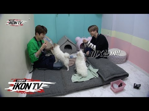iKON - '자체제작 iKON TV' EP.3 Unreleased Clip