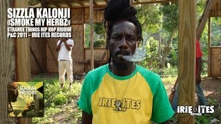 Download Lagu SIZZLA - SMOKE MY HERBZ - STRANGE THINGS HIP HOP RIDDIM - IRIE ITES RECORDS Mp3