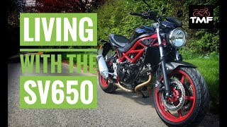 3. Living with the 2018 Suzuki SV650 - In Depth Review