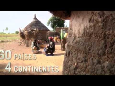 Vidéo Youtube - Développement international Desjardins