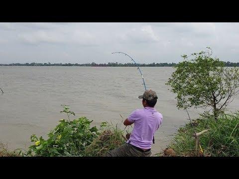 Tranh nhau lên cá. Điểm câu mới cá ăn liên tục lôi rớt cần, nhảy sông mò cá | Săn bắt SÓC TRĂNG | - Thời lượng: 58 phút.