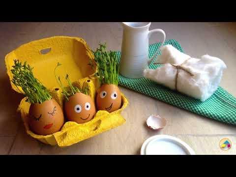 Cabeza de huevo