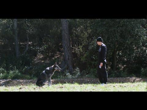 "Ambkor – ""Lobo negro"" [Videoclip]"