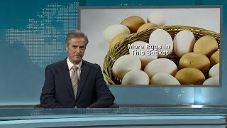 More Eggs in This Basket