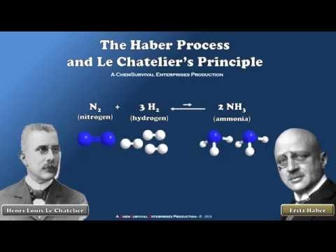 How The Haber Process Works (Le Chatelier's Principle)